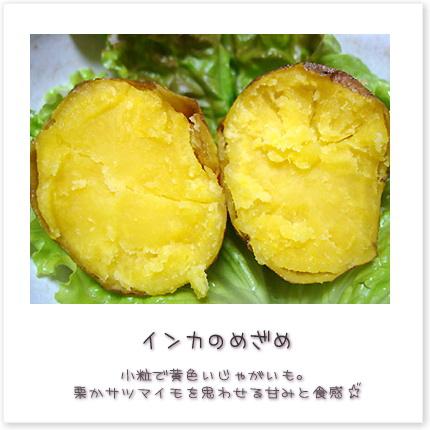 小粒で黄色いじゃがいも。栗かサツマイモを思わせる甘みと食感♪