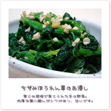 寒じめ栽培で育てられた冬の野菜。肉厚な葉に縮んだシワがあり甘いです♪
