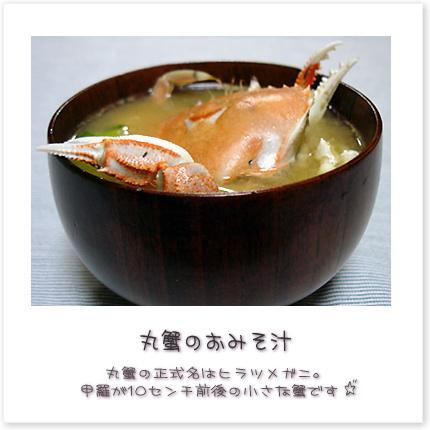 丸蟹の正式名はヒラツメガニ。甲羅が10センチ前後の小さな蟹です♪