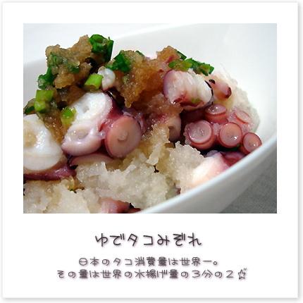 日本のタコ消費量は世界一。その量は世界の水揚げ量の3分の2♪