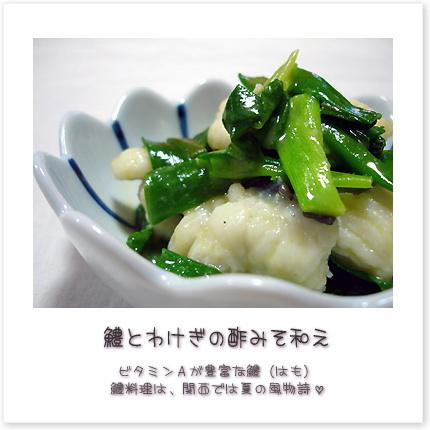 鱧とわけぎの酢みそ和え。ビタミンAが豊富な鱧(はも)。鱧料理は、関西では夏の風物詩。