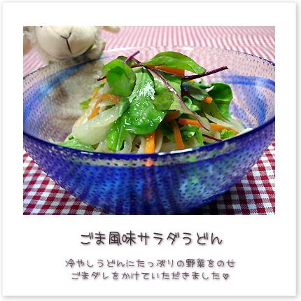 ごま風味サラダうどん。冷やしうどんにたっぷりの野菜をのせごまダレをかけていただきました。