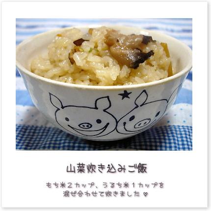 山菜炊き込みご飯☆もち米2カップ、うるち米1カップを混ぜ合わせて炊きました♪