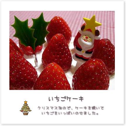 'いちごケーキ。クリスマスなので、ケーキを焼いていちごをいっぱいのせました♪
