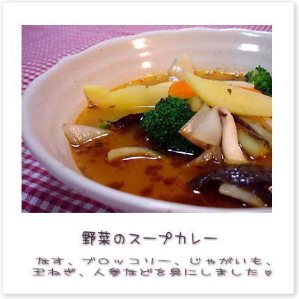 野菜のスープカレー。なす、ブロッコリー、じゃがいも、玉ねぎ、人参などを具にしました♪
