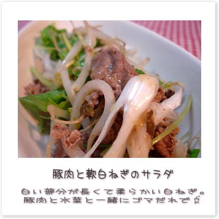 豚肉と軟白ねぎのサラダ。白い部分が長くて柔らかい白ねぎ。豚肉と水菜と一緒にゴマだれであえました♪