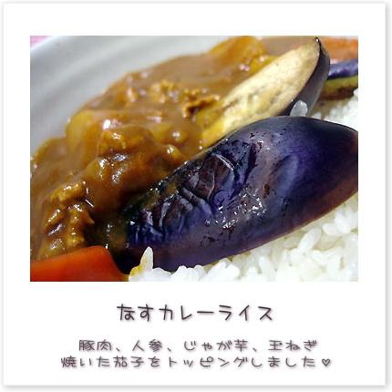 なすカレーライス♪豚肉、人参、じゃが芋、玉ねぎ、焼いた茄子をトッピングしました