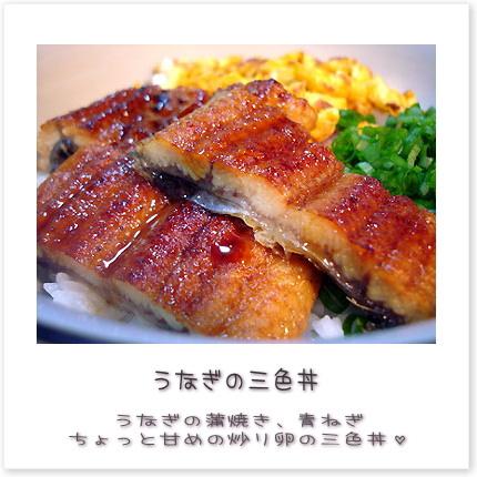 うなぎの三色丼♪うなぎの蒲焼き、青ねぎ、ちょっと甘めの炒り卵の三色丼。