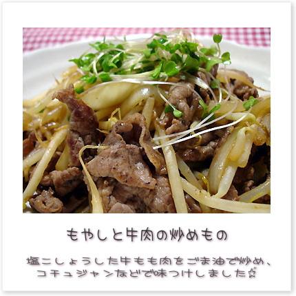もやしと牛肉の炒めもの♪塩こしょうした牛もも肉をごま油で炒め、コチュジャンなどで味つけしました。