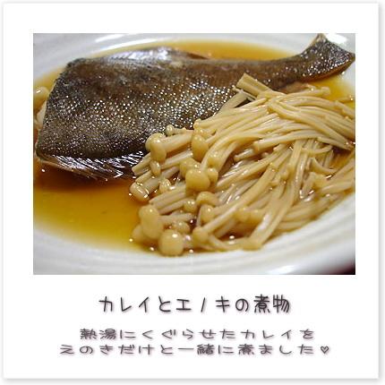 カレイとエノキの煮物♪熱湯にくぐらせたカレイをえのきだけと一緒に煮ました。