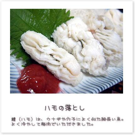 鱧(ハモ)は、ウナギや穴子によく似た細長い魚。よく冷やして梅肉でいただきました。