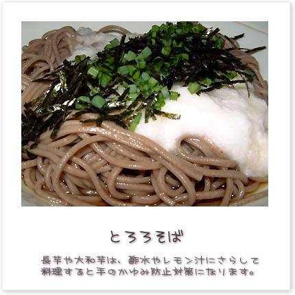 長芋や大和芋は、酢水やレモン汁にさらして料理すると手のかゆみ防止対策になります。